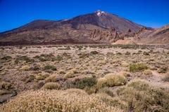 挂接Teide, Tenerife 免版税库存照片