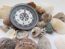 指南针和有趣的贝壳在白色背景在trave 库存图片