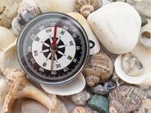 指南针和有趣的贝壳特写镜头,关于游览的背景 图库摄影