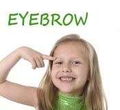 指向她的在身体局部的逗人喜爱的小女孩眼眉学会英国词学校 免版税库存图片