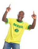 指向巴西的足球迷欢呼和 库存照片