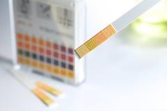 指示符酸碱度 免版税库存图片