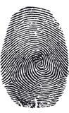 指纹向量 向量例证
