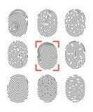 指纹或指尖印刷品证明被设置的传染媒介象 皇族释放例证