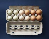按在纸盒的颜色顺序安置的鸡鸡蛋 免版税图库摄影