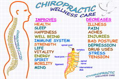 按摩脊柱治疗者健康关心疗法相关词 皇族释放例证
