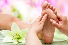 按摩脚的治疗师手。 免版税库存照片