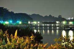 按晚上降低Seletar水库捕鱼跳船 库存照片
