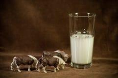 按照牛奶 库存照片
