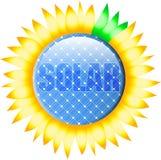 按钮太阳向日葵 库存例证