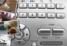 按钮控制数字式照片 库存照片
