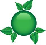 按钮绿色叶子 库存照片