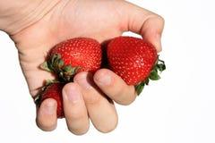 挑库员草莓 免版税库存照片