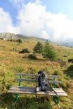 挑运在长凳和山在阿尔卑斯,奥地利 免版税库存图片
