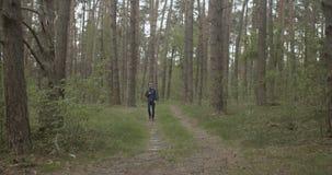 挑运的旅客在森林里 影视素材