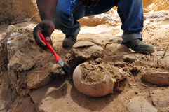 挖掘人的头骨的考古学家 免版税库存照片