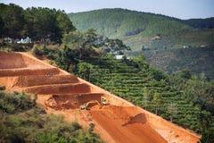 挖掘机在越南开掘咖啡豆种植园的大阳台 库存图片