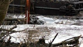 挖掘机的宽桶发现从河的底部的土壤 清洗和加深渠道 股票视频