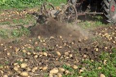 挖掘机的收获的土豆 库存照片
