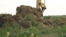 挖掘机装载卡车 股票录像
