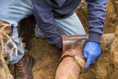 挖掘阻塞的下水道特写镜头的人 免版税库存照片