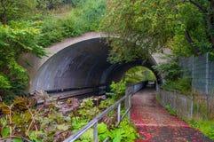 挖洞在铁路下在灵斯泰兹附近在丹麦 库存照片