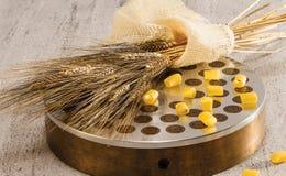 挤压和麦子古铜 免版税库存照片