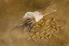 挤压,麦子和penne 免版税库存照片