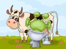 挤奶与外籍人和母牛的场面 免版税库存图片