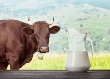 挤奶在木桌上的玻璃水罐与母牛在后面的草甸 免版税库存照片