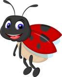 挥动动画片的逗人喜爱的瓢虫 库存照片
