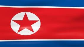 挥动北朝鲜旗子,为无缝的圈准备 股票视频