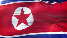 挥动在太阳的北朝鲜的旗子 与高度详细的织品纹理的无缝的圈 圈准备好在4k决议 股票视频