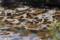挥动在湄公河下的岩石 库存图片
