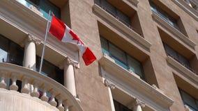 挥动在风的加拿大的旗子 红色和白色,枫叶的颜色 影视素材