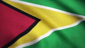 挥动在风的圭亚那的旗子 一面挥动的旗子的背景 库存例证
