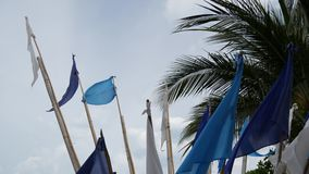 挥动在风的蓝旗信号 振翼在多云天气的风的小三角蓝旗信号在热带海滩 股票视频