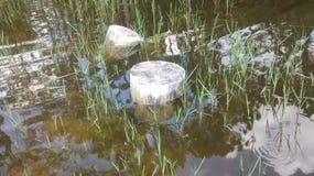 挥动的池塘 库存图片
