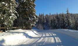 挪威冬天 库存图片