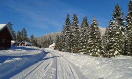 挪威冬天 免版税库存图片