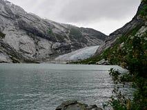 挪威冰川Nigardsbreen 库存图片