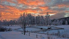 挪威在冬天 免版税库存照片
