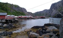 挪威夏天 库存图片
