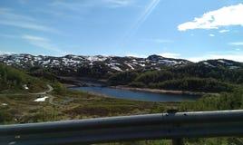 挪威夏天 免版税库存图片