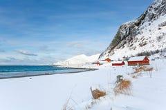 挪威多雪的海滩的红色房子 免版税图库摄影