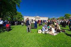 挪威宪法天 库存图片