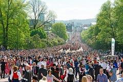 挪威宪法天 库存照片