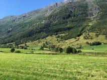 挪威山 免版税库存照片