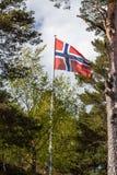 挪威旗子在庭院里 免版税库存照片