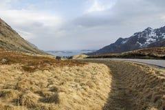 挪威海岛草原  免版税库存照片